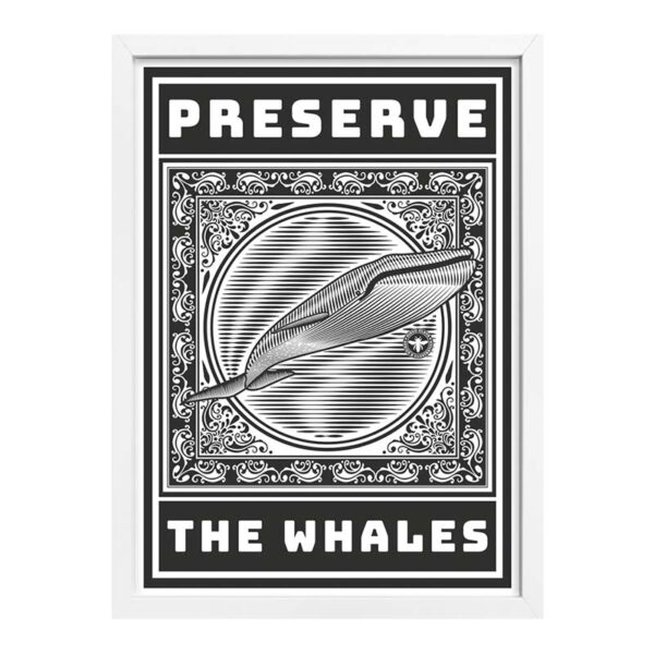 Preserve-the-whales-marco-blanco