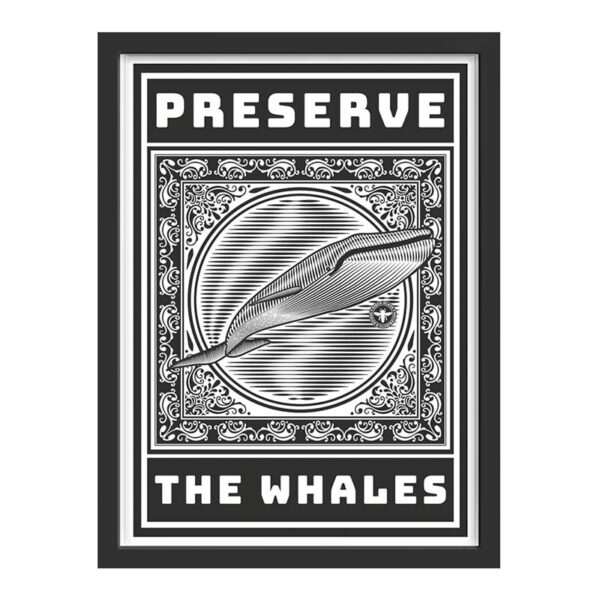 Preserve-the-whales-marco-negro